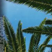 Mood (Steff Da Campo Remix) - Felix Cartal