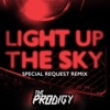 Light Up the Sky (Special Request Remix) - Single ジャケット写真
