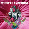 Winston Surfshirt - For the Record artwork
