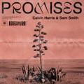 Brazil Top 10 Dance Songs - Promises - Calvin Harris, Sam Smith