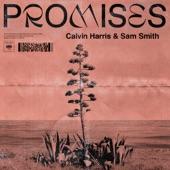 Promises artwork