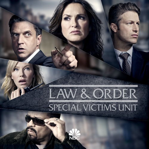 Law & Order: SVU (Special Victims Unit), Season 19 poster