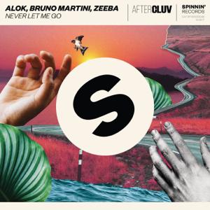 Alok, Bruno Martini & Zeeba - Never Let Me Go
