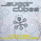 Sugarcubes - Eat the Menu