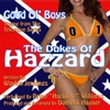 The Dukes of Hazzard Good Ol boys Theme from the TV Series Waylon Jennings feat Brian Hacksaw Williams Single