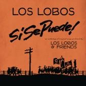 Los Lobos - Corrido De Dolores Huerta #39