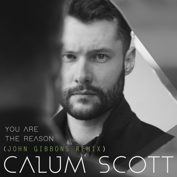 Calum Scott / John Gibbons - You Are The Reason