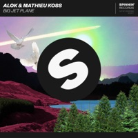 Big Jet Plane - Single - Alok & Mathieu Koss