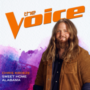 Sweet Home Alabama (The Voice Performance)