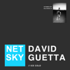 Netsky & David Guetta - Ice Cold artwork
