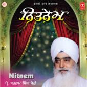 Nitnem-Prof. Satnam Singh Sethi