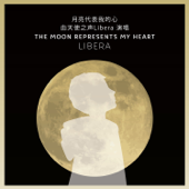 The Moon Represents My Heart - 月亮代表我的心