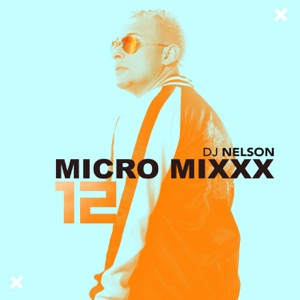 Micro Mixx, Vol. 12 - Single Mp3 Download