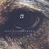 Jeff Plankenhorn - Sleeping Dogs