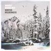 Winter Wilderness - EP - August Burns Red