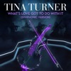 What's Love Got to Do With It (Symphonic Version) - Single, Tina Turner