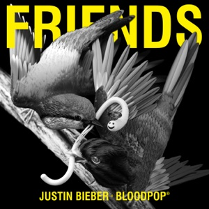 JUSTIN BIEBER AND BLOODPOP