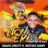Obaapa Christy - Woa Na Waye (feat. Brother Sammy) artwork