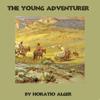 Horatio Alger - The Young Adventurer (Unabridged)  artwork