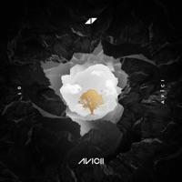 Lonely Together - AVICII / RITA ORA / AMICE