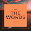 The Words (feat. Jethro Tait) [Radio Edit] - DJ Kent