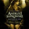 Andrzej Sapkowski - Baptism of Fire artwork