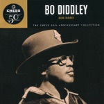 Bo Diddley - Before You Accuse Me (Take a Look At Yourself)