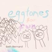 Seth Bernard - Eggtones Rag