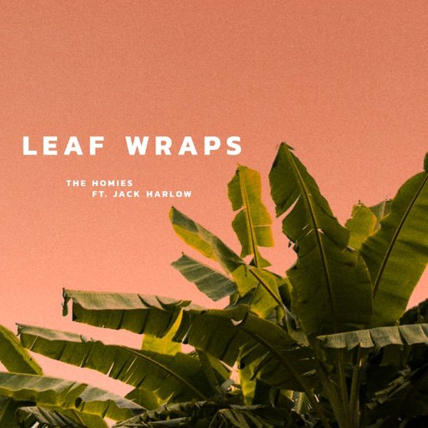 Leaf Wraps (feat. Jack Harlow) - Single