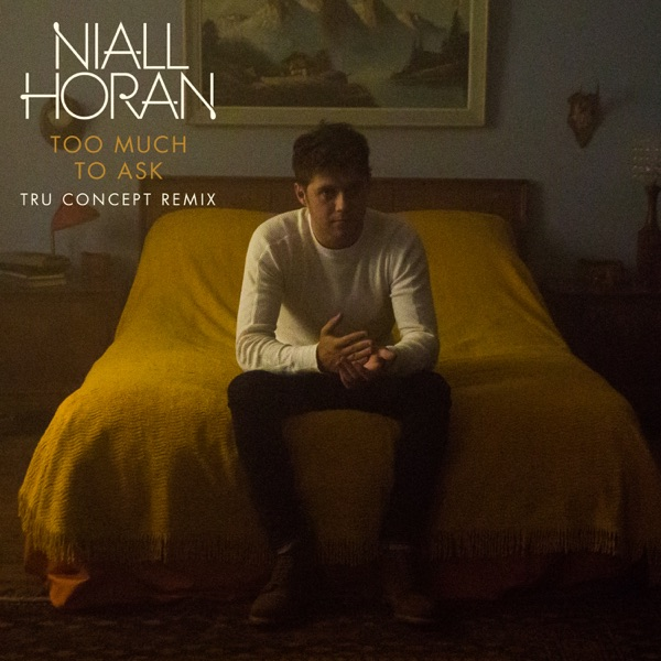 Niall Horan - Too Much To Ask (TRU Concept Mix)