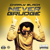 Never Grudge - Single
