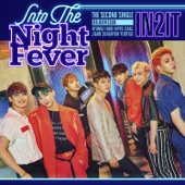 Into the Night Fever - EP