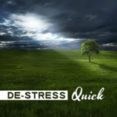 De-Stress Quick: Healing Sounds for Wellbeing, Happiness & Relax, Meditation for Stress Relieve, Harmony & Serenity