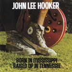 John Lee Hooker - How Many More Years You Gonna Dog Me 'Round?