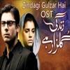 Zindagi Gulzar Hai Original Motion Picture Soundtrack Single