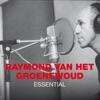 Icon Essential: Raymond van het Groenewoud