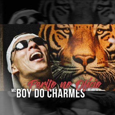 Perito No Oficio - Single - MC Boy do Charmes