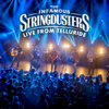 Live From Telluride - The Infamous Stringdusters