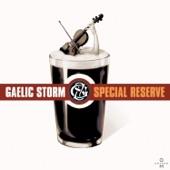 Gaelic Storm - Johnny Jump Up/Morrison's Jig