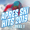 Apres Ski Hits 2019 (Deel 1) - Various Artists