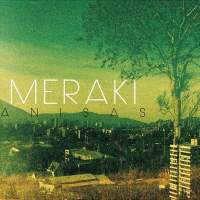Proyecto Meraki - Single - Anisas