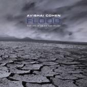 Avishai Cohen - Nature's Dance