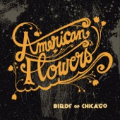 Birds of Chicago - American Flowers