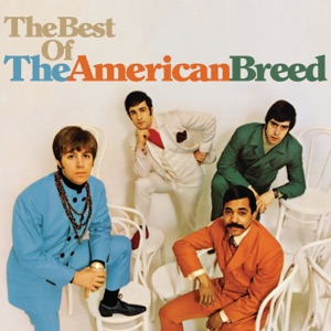 The American Breed - Bend Me, Shape Me - Line Dance Music
