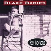 Blake Babies - Downtime