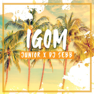 Junior & DJ SEBB - Igom