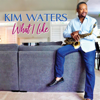 Kim Waters - What I Like  artwork