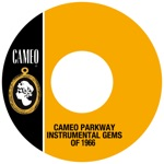 Cameo Parkway Instrumental Gems Of 1966