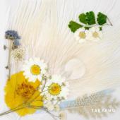 WHITE NIGHT -KR EDITION-