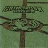 GrimSkunk - Mahmoud's Dream artwork